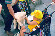Child age 2 in stroller playing with white poodle dog.  Zakopane Poland