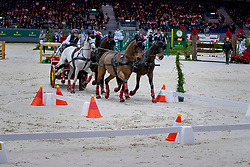 Harm Mareike, GER, Tulipan Allegra, El Chico, Luxus Boy, Qiebec Sautreuil, Zazou 30<br /> CHI Genève 2019<br /> © Hippo Foto - Stefan Lafrentz<br />  14/12/2019
