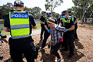 MELBOURNE, VIC - SEPTEMBER 19: A grandmother screams for her dog as she is arrested during the Freedom protest on September 19, 2020 in Melbourne, Australia. Freedom protests are being held in Melbourne every Saturday and Sunday in response to the governments COVID-19 restrictions and continuing removal of liberties despite new cases being on the decline. Victoria recorded a further 21 new cases overnight along with 7 deaths. (Photo by Dave Hewison/Speed Media)