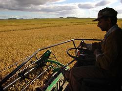 Lavoura de arroz em Cerro Largo, Uruguai./..Rice crop in Cerro Largo, Uruguay