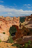 Natural Bridge, elevation 8627, Bryce Canyon National Park, Utah, USA.