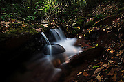 Small waterfall in the thick forest of Manu National Park, Peru.