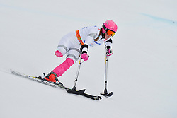 Line Damgaard, Women's Giant Slalom at the 2014 Sochi Winter Paralympic Games, Russia