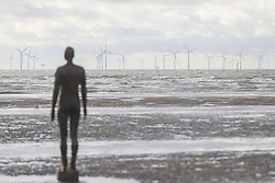 © Licensed to London News Pictures. 06/10/2020. Crosby, UK. The Iron Men at Crosby Beach look out over the Burbo Bank Offshore Wind Farm off the coast of Liverpool. Boris Johnson pledged to make every home in the UK powered by offshore wind farms by 2030. Photo credit: Kerry Elsworth/LNP
