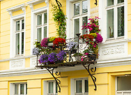 Colourful flower boxes on an old yellow building in Bergen, Norway, Europe