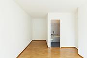 interior of an apartment, empty room with bathroom, parquet floor