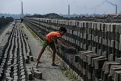 November 21, 2018 - Dhaka, Bangladesh - A child works in the brickfield in Dhaka, Bagladesh, on November 21, 2018. (Credit Image: © Kazi Salahuddin Razu/NurPhoto via ZUMA Press)