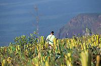 Hombre caminando sobre la cima del tepuy Autana, Amazonas, Venezuela.