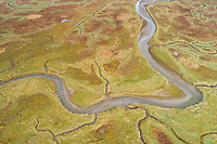 Aerial view of small stream crossing wetland, Netherlands.