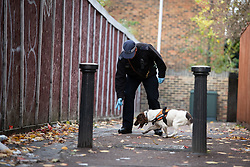 """© Licensed to London News Pictures. 07/11/2018. White City, London, UK. """"Lotte"""" a police dog and her handler at the scene of a serious assault in west London. A teenage boy became the latest victim in a spate of knife attacks across the capital. The boy was stabbed this afternoon on Willow Vale, off Uxbridge Road in White City. He is understood to be seriously ill in hospital after being found with life threatening injuries. Within two hours in a separate incident, a man was stabbed in Hackney, east London. Photo credit Guilhem Baker/LNP"""