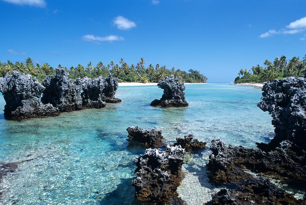 French Polynesia Rangiroa Atoll Tuamotu Archipelago, Ile aux Recifs, fossilized coral formations