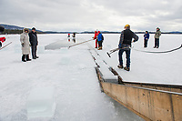 Ice Harvest at Rockywold Deephaven Camp on Lake Squam.  Karen Bobotas for the Laconia Daily Sun