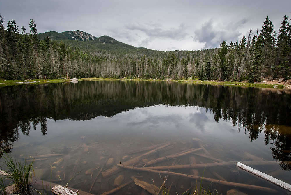 The Pecos Wilderness is one of the largest roadless areas in the southern Rocky Mountain ecosystem