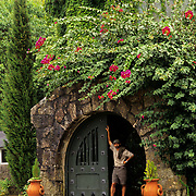 South America, Uruguay, Santa Teresa Reserve, conservatory, greenhouse in nature reserve