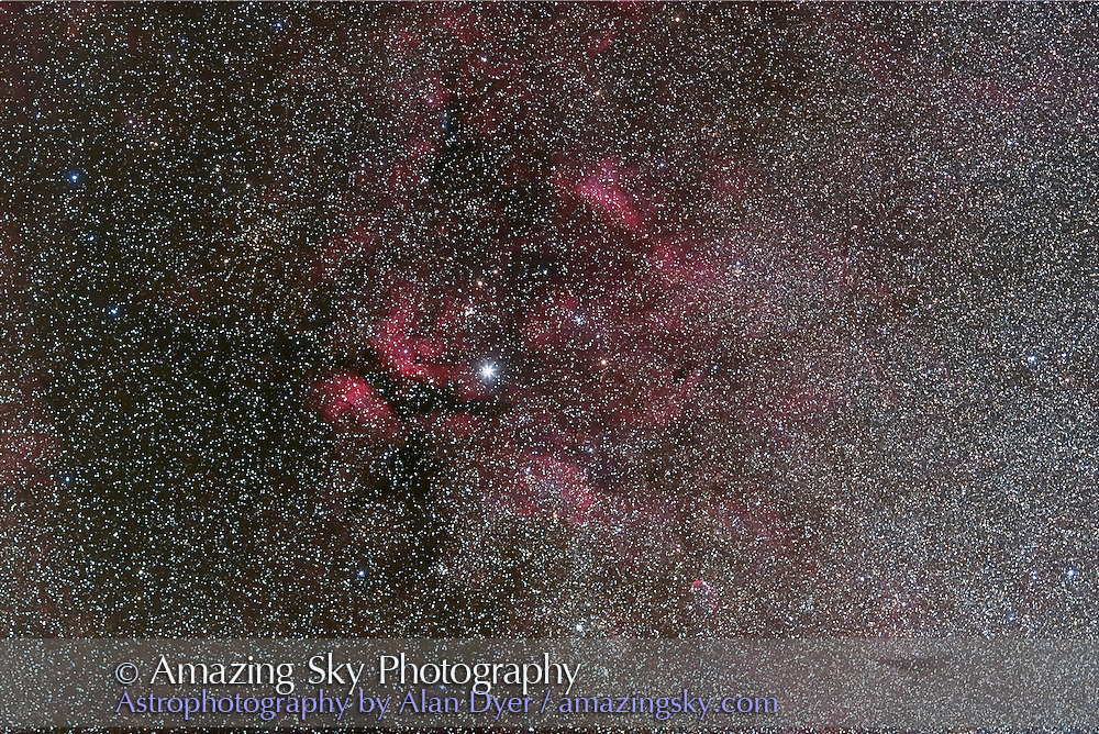 Gamma Cygni area, NGC 1318 and NGC 1311, with 135mm Canon L-lens at f/2.8 and Canon 20Da camera at ISO 800 for stack of 4 x 4 minute exposure. Taken Sept. 8, 2007 from home. M29 and NGC 6910 clusters in field. Sharper focus than Aug 15 version.