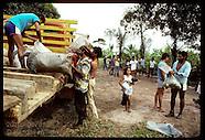 07: AMAZON JUNGLE RAID AFTERMATH