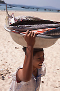 A woman transports fish from a boat in Tezit Beach, Tanintharyi Region, Burma.<br /> Note: Images are not distributed or sold in Portugal