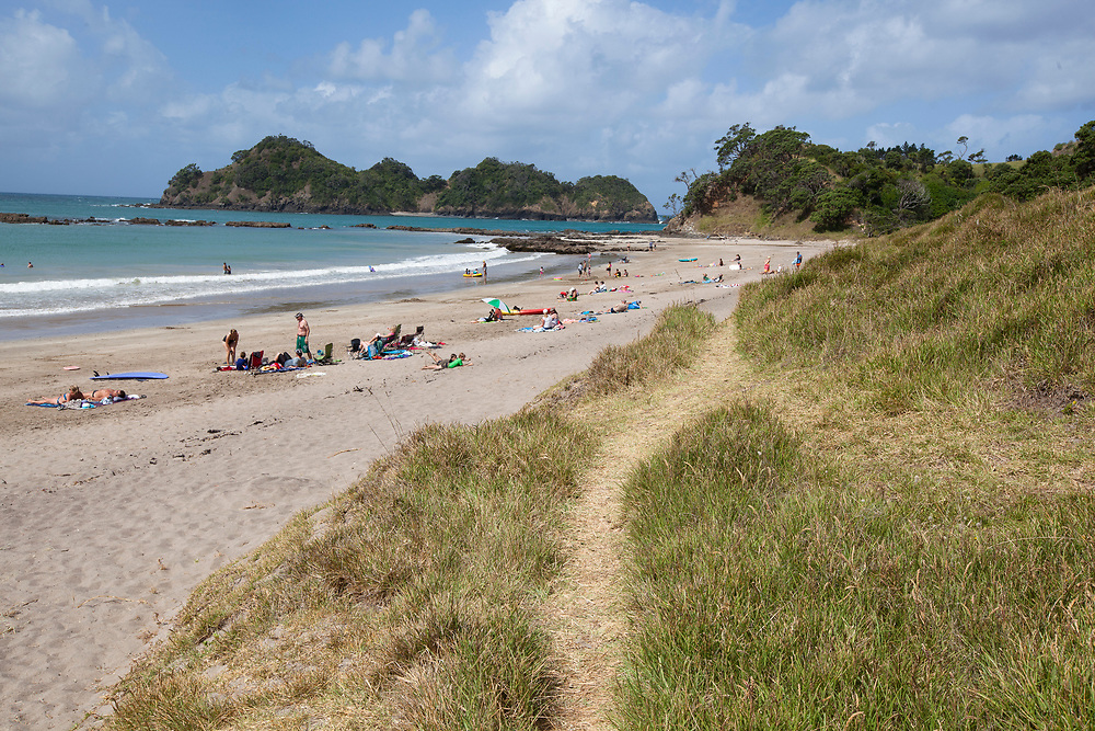 Otamure Bay, Whananaki is DOC camping area with a beach from setting with large Pohutukawa trees