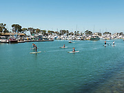 Paddle Boarding In The Dana Point Harbor