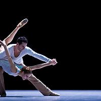Swirl Ballet Night