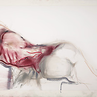 I was in a drawing class. We had one my favorite models who worked for Cirque du Soleil. I saw back, saw butt, and felt red. This came to me in barely five minutes instead of five years like many of my works. Materials: Pastel on museum-grade archival quality Rives paper