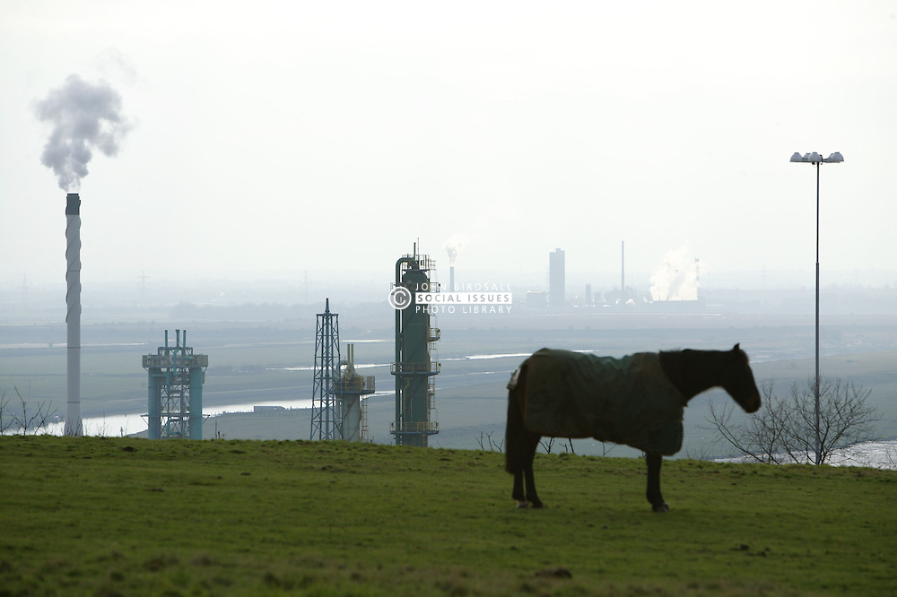 Ineos Chlor; chemical works near Runcorn; Cheshire; with horse at Weston in foreground,