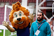 Scoltand mascot 'Roary' playing hide and seek ahead of the U21 UEFA EUROPEAN CHAMPIONSHIPS match Scotland vs England at Tynecastle Stadium, Edinburgh, Scotland, Tuesday 16 October 2018.