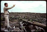 01: AMAZON ECO PLOTS CLEARCUTS