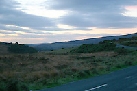 Evening landscape, County Wicklow, Ireland