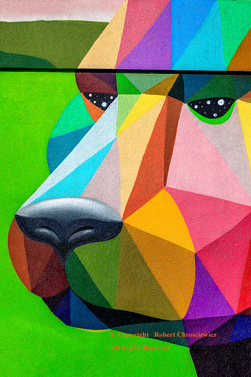 Surrealistic Bear:  A strikingly colourful, surrealistic mural of a bear, found on the exterior of a building in Vancouver, British Columbia Canada.