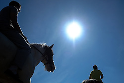 © Licensed to London News Pictures. <br /> 06/06/2014. <br /> <br /> Appleby, Cumbria, England<br /> <br /> Horses are taken down to the River Eden to be washed as gypsies and travellers gather during the annual horse fair on 6 June, 2014 in Appleby, Cumbria. The event remains one of the largest and oldest events in Europe and gives the opportunity for travelling communities to meet friends, celebrate their music, folklore and to buy and sell horses.<br /> <br /> The event has existed under the protection of a charter granted by King James II in 1685 and it remains the most important event in the gypsy and traveller calendar.<br /> <br /> Photo credit : Ian Forsyth/LNP