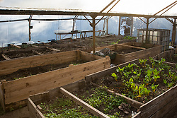 London, UK. 26th February, 2019. A polytunnel at Grow Heathrow, a squatted eco-community founded in 2010 on a previously derelict site close to Heathrow airport in protest against government plans for a third runway which was today partially evicted by bailiffs. The community has developed an extensive garden and is acknowledged to have made a significant educational and spiritual contribution to life in the Heathrow villages which are threatened by airport expansion. Bailiffs today evicted most of the front section of the site, owned by Imran Malik, removing several protesters locked on in towers above the camp, but four protesters are believed to remain in a tunnel beneath that area. Many more protesters remain on the rear portion of the site. Five legal challenges to the government's approval of a 3rd runway at Heathrow will proceed to judicial review at the Royal Courts of Justice on 10th March.