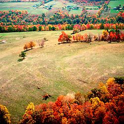 Aerial View of farm & Wetlands