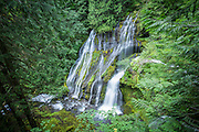 Panther Creek Falls in the Gifford-Pinchot National forest, Washington.