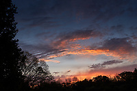 Colorful Clouds at Dawn. Backyard Autumn Nature in New Jersey. Image taken with a Leica CL camera and 23 mm f/2 lens.