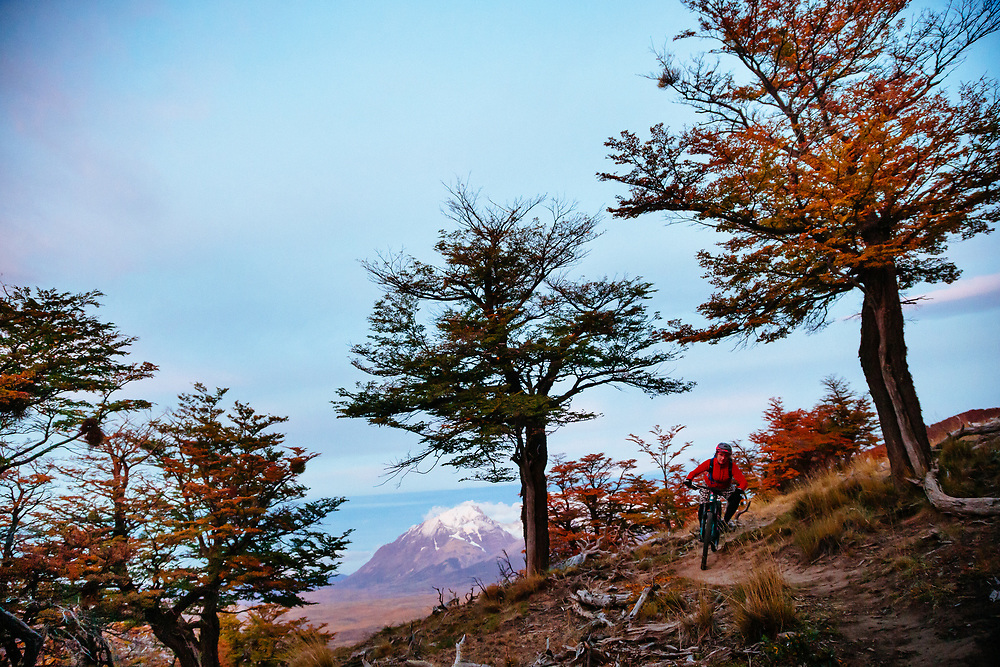 Heather Goodrich riding the Sierra Contrera trail to Estancia Gemita. Through the lenga or beech trees of Patagonia at sunrise over the Paine Massive and Los Torres.