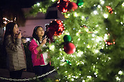Bridget Morgan, 10, left, and Samantha Wong, 10, admire the Milpitas Christmas Tree during the Milpitas Christmas Tree Lighting Ceremony at Milpitas City Hall, in Milpitas, California, on December 1, 2013. (Stan Olszewski/SOSKIphoto)