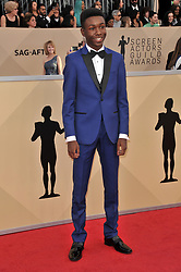 arrives at the 24th annual Screen Actors Guild Awards at The Shrine Exposition Center on January 21, 2018 in Los Angeles, California. <br /><br />(Photo by Sthanlee Mirador/Sipa USA)
