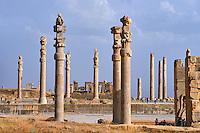 Iran, province du Fars, Persepolis, patrimoine mondial de l'UNESCO, colonnes du Palais d'Apadana // Iran, Fars Province, Persepolis, World Heritage of the UNESCO, pillars of the Apadane palace