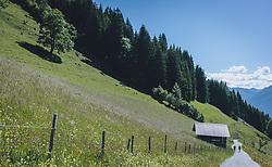 THEMENBILD - Wanderer gehen auf einem breiten Wanderweg, der durch blühende Bergwiesen geht, in der ein Heustadl steht, aufgenommen am 13. Juni 2020 in Goldegg, Oesterreich // a wide hiking trail leads through flowering mountain meadows, in which a hay barn stands, Austria on 2020/06/13. EXPA Pictures © 2020, PhotoCredit: EXPA/Stefanie Oberhauser