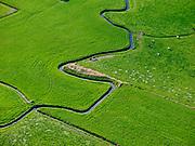 Nederland, Gelderland, Elburg, 07-05-2021; Nunspeet, Nodbeek. Koeien in het weiland bij meanderende beek.<br /> <br /> luchtfoto (toeslag op standard tarieven);<br /> aerial photo (additional fee required)<br /> copyright © 2021 foto/photo Siebe Swart