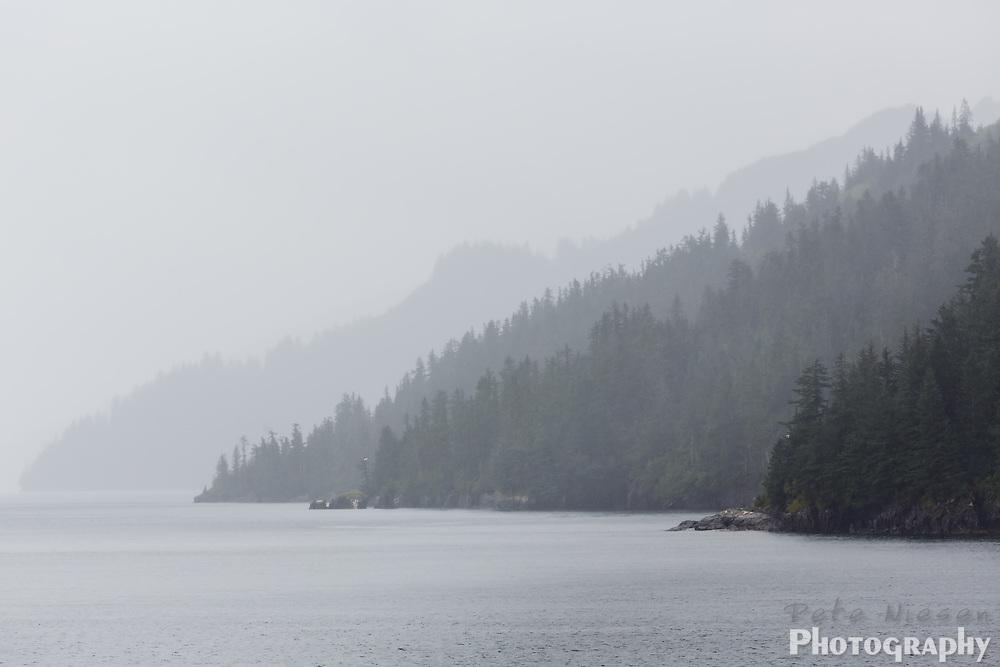 Wilderness scene of a fog shrouded tree covered mountainous shoreline