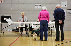 © Licensed to Alison Baskerville. 02/05/2013. Warwickshire, UK.  Voters arrived this morning  at  the Castle Farm Leisure Centre in the historic town of Kenilworth to go to the polls two years ahead of the next general election.  The results are set to be scrutinised by the major parties as over 34 local authorities take part in todays elections.  Photo credit: Alison Baskerville/LNP...**PLEASE NOTE:  Consent has been gained from everyone featured in this set of images.**