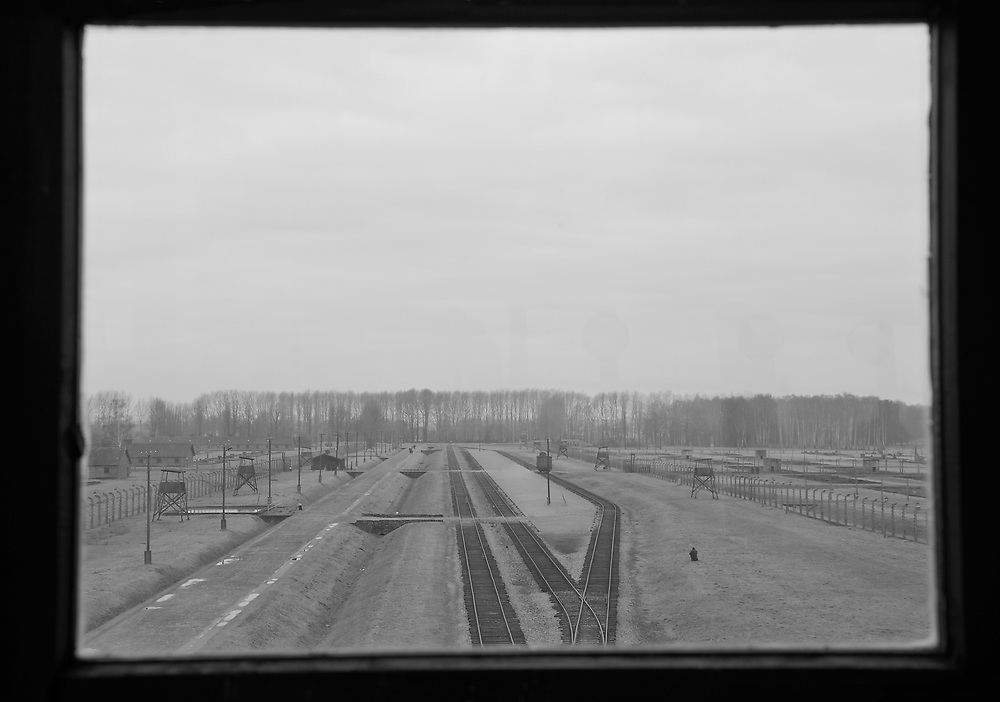 View from the Birkenau watch tower.