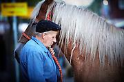 ELST-De 750 ste editie van de Elster paardenmarkt is maandag boven verwachting verlopen. Hiervoor was niet alleen het weer verantwoordelijk. Er werden circa 2300 dieren aangevoerd, zo'n 100 meer dan vorig jaar. De handel kwam snel op gang. Veel paarden worden opgekocht door buitenlandse handelaren<br /> <br /> Zo'n veertigduizend mensen  bezochten het evenement.<br /> <br /> De paardenmarkt in Elst behoord samen met de markten in Hedel en Zuid-Laren tot de grootste in Nederland. Hoewel de paardenmarkt zal blijven bestaan, is de verwachting dat de paardenhandel in de toekomst een minder grote rol gaat spelen. Dit omdat de wetgeving voor deze markten en het vervoer van paarden steeds strenger wordt