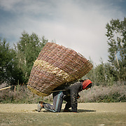Carrying hay.  The traditional life of the Wakhi people, in the Wakhan corridor, amongst the Pamir mountains.