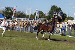 Show<br /> KWPN Paardendagen Ermelo 2004<br /> Photo © Hippo Foto