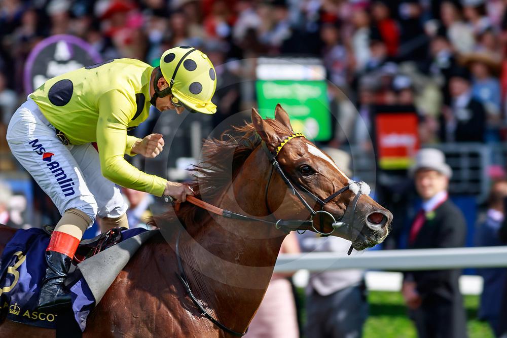 Cape Byron (A. Atzeni) wins The Wokingham Stakes at Royal Ascot, 22/06/2019, photo: Zuzanna Lupa