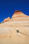 Marbled sandstone formations under blue sky in the Coyote Buttes area, Paria Canyon-Vermilion Cliffs Wilderness, Arizona