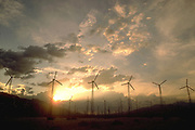 Windmills, Palm Springs, California (DT)